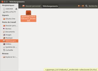 gopenvpn ubuntu dl