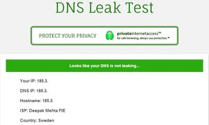 Private Internet Access-DNS-Leak-Test