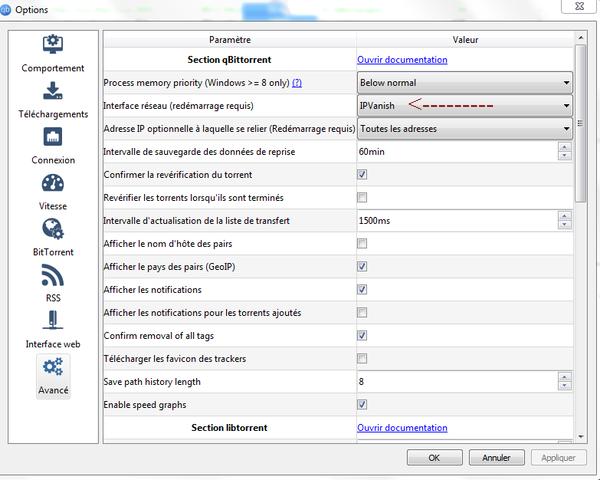 qBittorrent avec un VPN pour des téléchargements anonymes 7